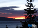 Talmont & Tahoe Park Heights Real Estate Homes for Sale